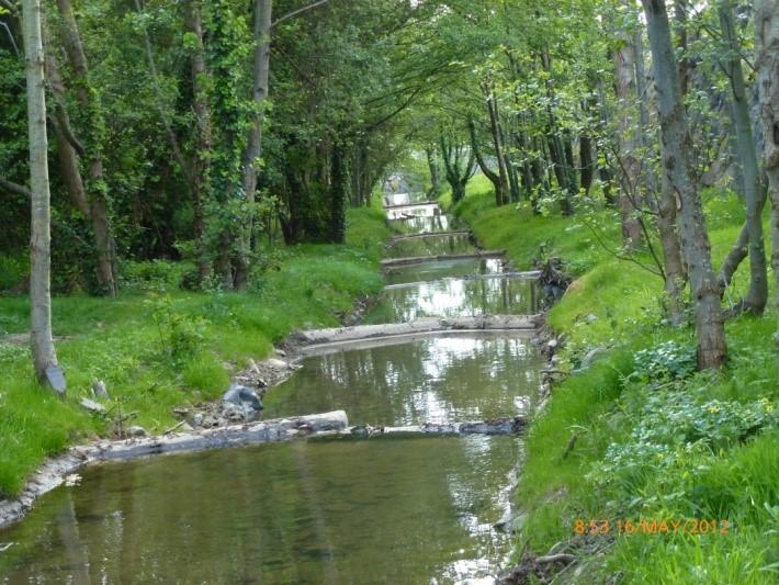 NATURALIZACIÓN-DE-CANAL-EN-BERMEO-BIZKAIA-EDTF (1)